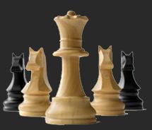 Schachverein Heiden